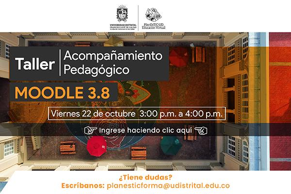Acompañamiento en Moodle 3.8 para profesores y profesoras