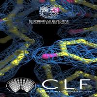 Imagen evento Te esperamos este martes 9 de febrero en el Coloquio de Licenciatura en Física